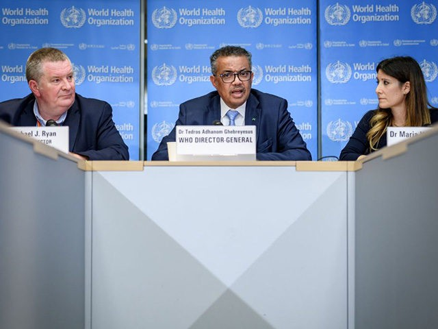 (From L - R) World Health Organization (WHO) Health Emergencies Programme Director Michael Ryan, WHO Director-General Tedros Adhanom Ghebreyesus and WHO Technical Lead Maria Van Kerkhove attends during a daily press briefing on COVID-19 virus at the WHO headquaters on March 2, 2020 in Geneva. - The World Health Organization …