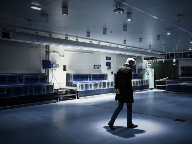 TOPSHOT - Marketing and communication director of the multinational wholesale chain METRO for France Frederic Bourcy walks through the closed fresh fish area in the group's flagship shop in Nanterre on March 27, 2020 during a strict lockdown in France aimed at curbing the spread of the COVID-19 infection, caused …