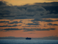 The Princess Cruises Grand Princess cruise ship sits off the coast of San Francisco as it takes on supplies on March 07, 2020 in San Francisco, California. The Princess Cruises Grand Princess continues to circle off the coast of San Francisco after 21 people tested positive for Coronavirus COVID - …