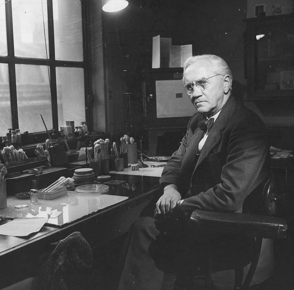 1951: British bacteriologist and Nobel laureate Sir Alexander Fleming (1881 - 1955) in his laboratory at the Wright-Fleming Institute, St Mary's Hospital, Paddington. Fleming was born in Ayrshire and educated at St Mary's Hospital, Paddington, where he served as Professor of Bacteriology (1928 - 1948). Fleming was the first doctor to use anti-typhoid vaccine on a human patient and he also discovered the antiseptic properties of lysozyme found in tears, body fluids and certain plants. He is most famous for his discovery of the antibiotic powers of penicillin in 1928. Fleming shared the 1945 Nobel Prize for Physiology or Medicine with the two chemists who had perfected a method of producing penicillin. (Photo by Baron/Getty Images)