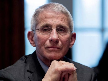 Dr. Anthony Fauci: U.S. Starting to Be Able to Possibly 'Flatten Out' Coronavirus Curve