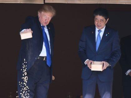 Trump koi (Jim Watson / AFP / Getty)