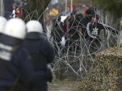 migrant