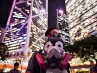 TOPSHOT - A dog owner holds a stuffed dog in a gas mask during the Veterinary Groups Say No To Tear Gas rally at Chater House in Hong Kong on August 30, 2019. (Photo by Lillian SUWANRUMPHA / AFP) (Photo credit should read LILLIAN SUWANRUMPHA/AFP via Getty Images)