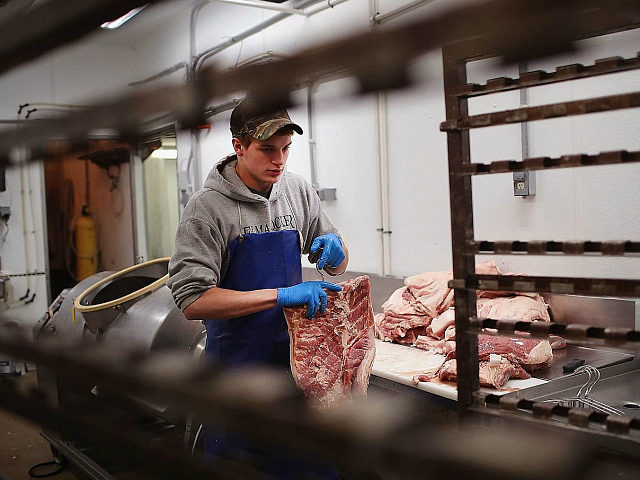 ELMA, IA - JULY 25: Lucas Gebel makes bacon while helping to process hogs at Elma Locker & Grocery on July 25, 2018 in Elma, Iowa. The locker custom butchers hogs and cattle and other livestock for area customers. According to the Iowa Pork Producers Association, Iowa is the number …