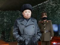 North Korea fires multiple projectiles: South's military