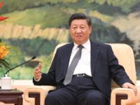 Xi Jinping Flees to Chinese Wetlands for Environmentalism Photo Op