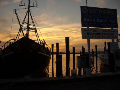 Barnegat marina, New Jersey