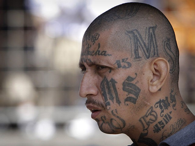 FILE - In this March 26, 2012 file photo a gang member of MS-13 attends mass at a prison in Ciudad Barrios, El Salvador. MS-13, or the Mara Salvatrucha, is believed by federal prosecutors to have thousands of members across the U.S., primarily immigrants from Central America. It has a …