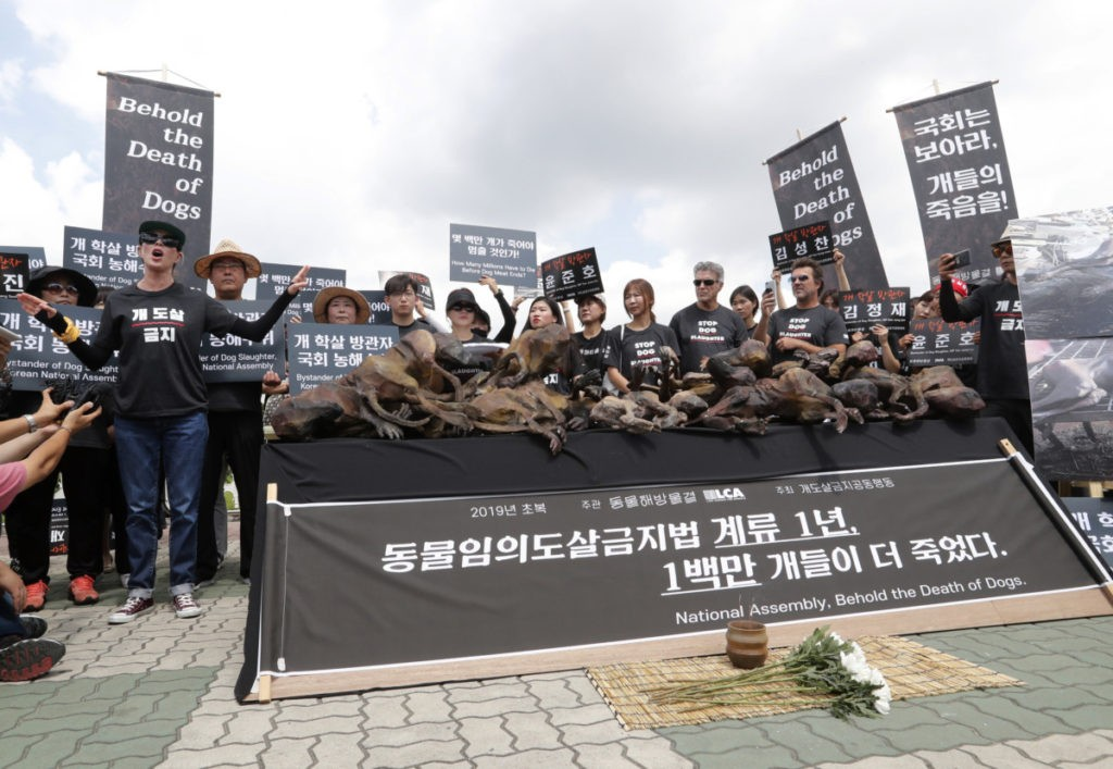 "American actress Kim Basinger, left, speaks as members of the Last Chance for Animals with models of slaughtered dogs hold a rally to oppose eating dog meat in front of the National Assembly in Seoul, South Korea, Friday, July 12, 2019. July 12 is the day South Koreans eat healthy foods such as dog meat in the belief it would help them survive heat during summer. The signs read: ""How many millions have to die before dog meat ends?"" (AP Photo/Ahn Young-joon)"