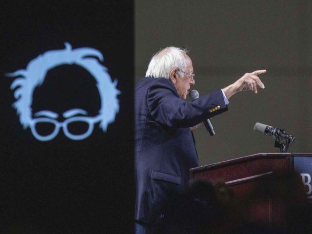 Bernie Sanders hairline (David McNew / Getty)