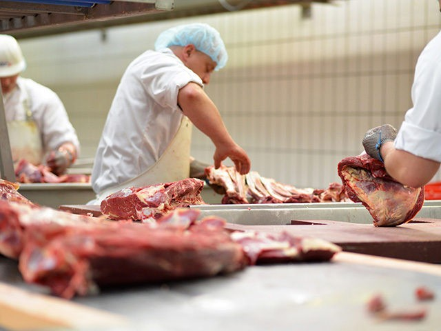 workplace food industry - factory butchery for the production of sausages - butcher cuts meat
