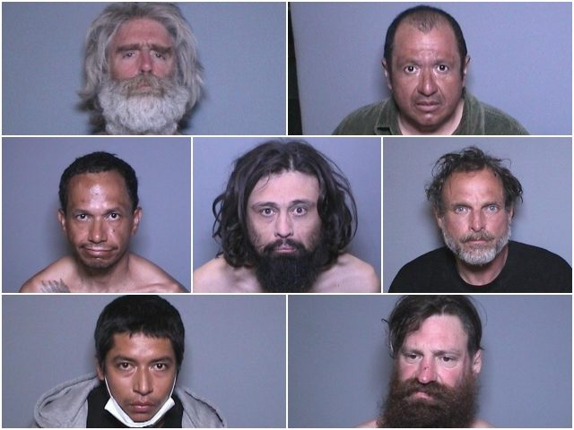 OC sex offenders