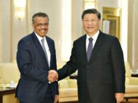 BEIJING, CHINA - JANUARY 28: Tedros Adhanom, Director General of the World Health Organization, (L) shakes hands with Chinese President Xi Jinping before a meeting at the Great Hall of the People, on January 28, 2020 in Beijing, China. (Photo by Naohiko Hatta - Pool/Getty Images)