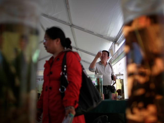 A Chinese man takes a closer look at a Chinese medicine on display at a booth during a Health Culture Festival held at the Ditan Park in Beijing, China Friday, May 13, 2011. The Health Culture Festival will offer free doctors consultation services and Chinese medicine information to the people …