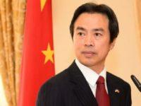 Du Wei China's Ambassador to Israel