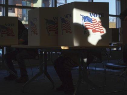 Michigan voting (Elaine Cromie / Getty)