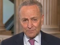 Schumer: Trump's Economic Executive Orders 'Will Be Litigated in Court'