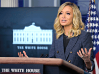 Kayleigh McEnany: No One Needs to Be Fact Checked More than the Media