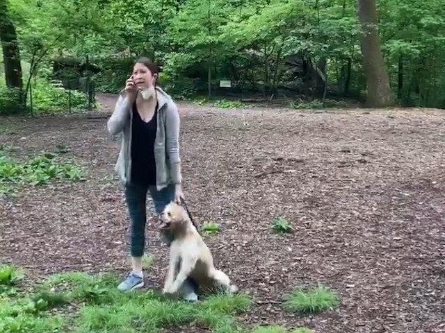 amy-cooper-dog
