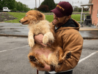 Eric Johnson, 37, reunited with miniature Australian Shepherd, Bella, who was lost during the category 4 tornado that hit Cookeville, Tenn. on May 3, 2020.Eric Johnson, 37, reunited with miniature Australian Shepherd, Bella, who was lost during the category 4 tornado that hit Cookeville, Tenn. on May 3, 2020. Eric …