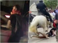 Watch: NYPD Whack Rioter with Car Door, Houston Police Horse Tramples Protester