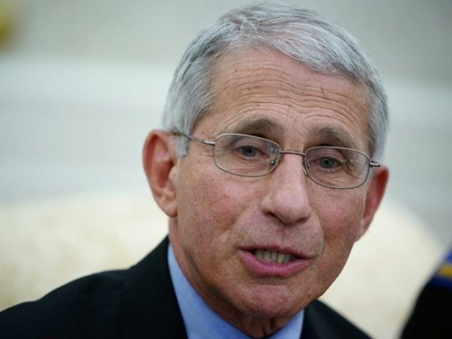 US COVID Death Toll 'Almost Certainly Higher' Than Reported, Fauci Tells Senate