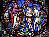 """""""Adam and Eve in the Garden of Eden. Stained Glass window in the cathedral of Brussels, Belgium. This window was created before 1870; no property release is required."""
