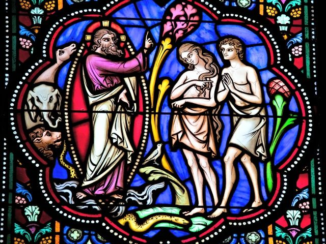 """Adam and Eve in the Garden of Eden. Stained Glass window in the cathedral of Brussels, Belgium. This window was created before 1870; no property release is required."