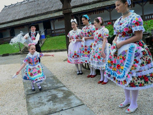 Some local school girls in traditional clothes of the Kalocsa area react as boys throw water in Kalocsa, some 100 km south of Budapest on April 17, 2014 during a rehearsal of the traditional Easter celebrations by the members of the local folk dance group. Locals from south Hungary celebrate …