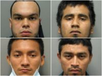 Four illegal alien MS-13 Gang members and another member of …