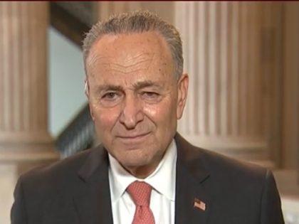 Schumer: Senate Should Adjourn Until After Election