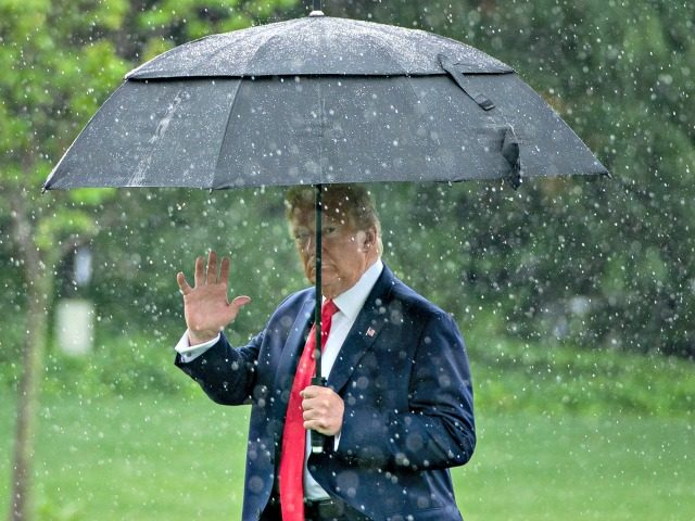 WASHINGTON, DC - JUNE 11: U.S. President Donald Trump walks to Marine One in the rain on the South Lawn of the White House on June 11, 2020 in Washington, DC. Later today, President Trump was scheduled to meet with pastors, law enforcement officials and small business owners at a …