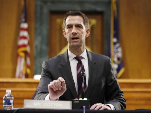 In this May 5, 2020, file photo Sen. Tom Cotton, R-Ark., speaks during a Senate Intelligence Committee nomination hearing for Rep. John Ratcliffe, R-Texas, on Capitol Hill in Washington. Cotton has risen to the ranks of potential 2024 Republican presidential contenders by making all the right enemies. Now, the Arkansas …