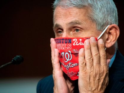 Anthony Fauci, director of the National Institute of Allergy and Infectious Diseases, adjusts a face covering during a Senate Health, Education, Labor and Pensions Committee hearing in Washington, DC, June 30, 2020. - Fauci and other government health officials updated the Senate on how to safely get back to school …