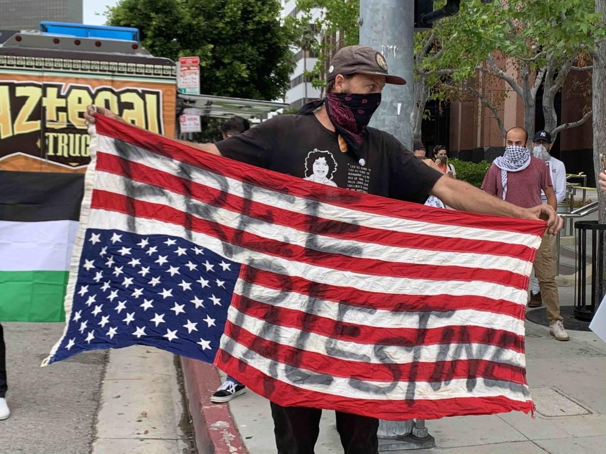Free Palestine Sovereigty Protest 4 (Joel Pollak / Breitbart News)
