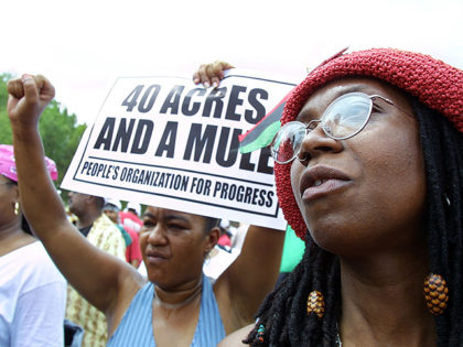 WASHINGTON, DC - AUGUST 17: Andrea Levy (R) from Queens, New York, joins other demonstrators for slave reparations on the National Mall August 17, 2002 in Washington, DC. Hundreds of blacks rallied, saying it is long past time to compensate blacks for the ills of slavery. (Photo by Manny Ceneta/Getty …