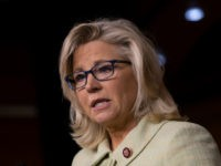 Liz Cheney: 'I Do Regret' Voting for Trump in 2020