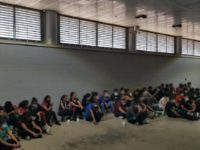 Agents apprehended 58 migrants at Interstate 35 immigration checkpoint. (Laredo Sector Border Patrol agents apprehended nearly 110 migrants in a 24-hour period in two separate human smuggling interactions. One involved a human smuggling stash house in Laredo, Texas. The second involved a tractor-trailer interdiction at an interior immigration checkpoint. Laredo …