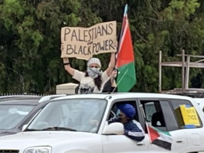 Palestinians for Black Power Sovereigty Protest 3 (Joel Pollak / Breitbart News))