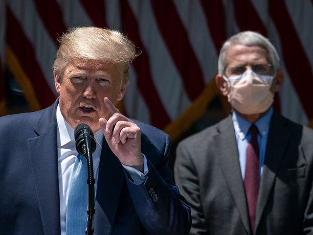 "WASHINGTON, DC - MAY 15: Dr. Anthony Fauci (R), director of the National Institute of Allergy and Infectious Diseases, looks on as U.S. President Donald Trump delivers remarks about coronavirus vaccine development in the Rose Garden of the White House on May 15, 2020 in Washington, DC. Dubbed ""Operation Warp …"