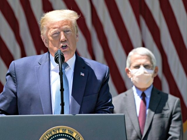 "WASHINGTON, DC - MAY 15: U.S. President Donald Trump is flanked by Dr. Anthony Fauci, director of the National Institute of Allergy and Infectious Diseases while speaking about coronavirus vaccine development in the Rose Garden of the White House on May 15, 2020 in Washington, DC. Dubbed ""Operation Warp Speed,"" …"