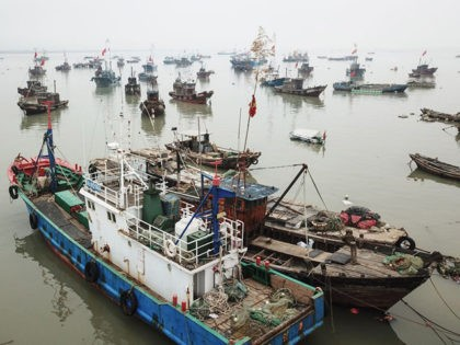 Fishing boats head back to a port as fisherfolks prepare for the summer fishing moratorium in Lianyungang in China's eastern Jiangsu province on April 24, 2019. - The summer fishing moratorium of the Yellow Sea and the East China Sea waters will start on May 1. (Photo by STR / …