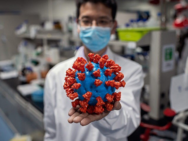 TOPSHOT - In this picture taken on April 29, 2020, an engineer shows a plastic model of the COVID-19 coronavirus at the Quality Control Laboratory at the Sinovac Biotech facilities in Beijing. - Sinovac Biotech, which is conducting one of the four clinical trials that have been authorised in China, …