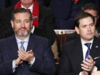 Beijing Sanctions Ted Cruz and Marco Rubio for Criticizing China