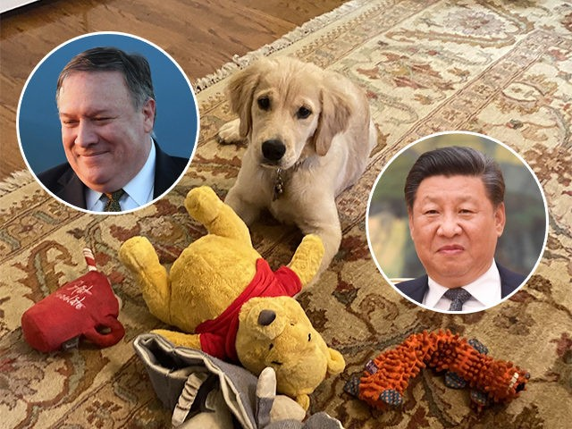 mike-pompeo-xi-jinping-winnie-the-pooh-dog