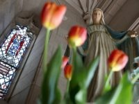 Nolte: Chattanooga Beheading of Virgin Mary Statue Is Latest Attack on Catholic Church