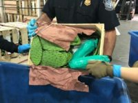 One Ton of Meth Seized in Two Cross-Border Cactus Shipments