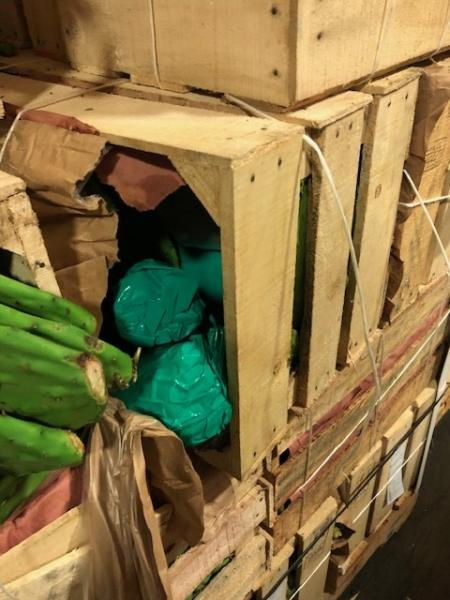 CBP officers at the Otay Mesa commercial port of entry found a ton of methamphetamine in two shipments of cactus coming from Mexico. (Photo: U.S. Customs and Border Protection/San Diego Sector)