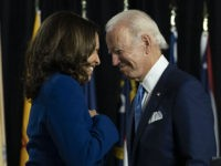 Milwaukee County Recount Adds 132 Votes to Biden-Harris